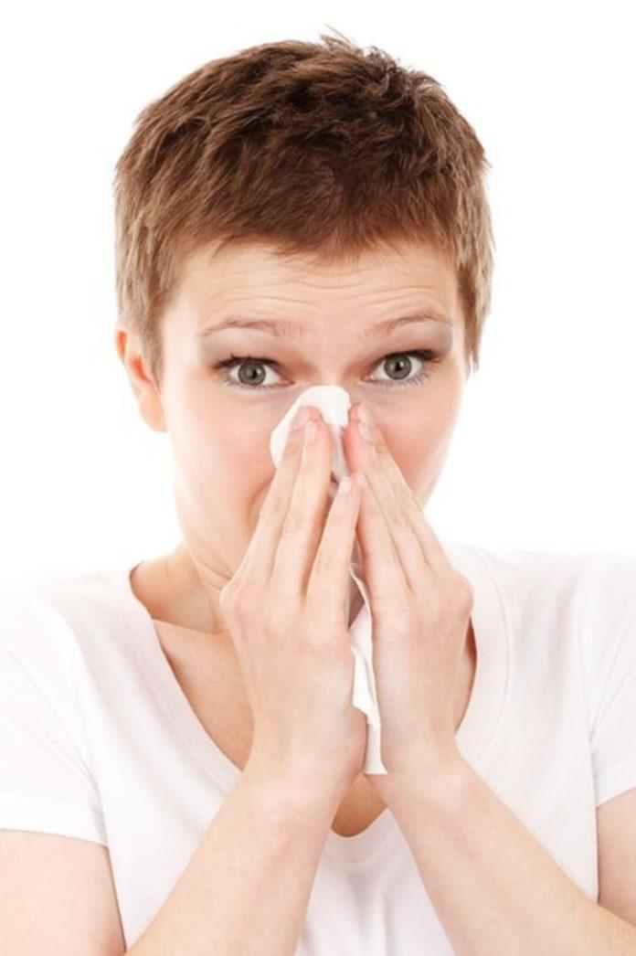 Défense immunitaire, santé hiver, complément alimentaire